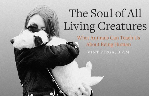 soul-of-all-living-creatures-vint-virga-horizontal