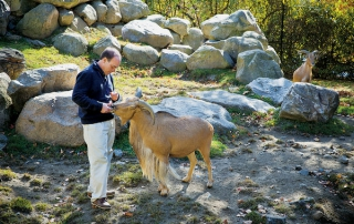 Vint Virga with Molly, a Barbary sheep. (Credit Robin Schwartz for The New York Times)